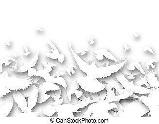 cutout, 鴿子