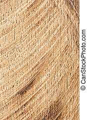 Cutted wood texture