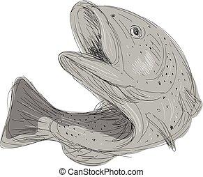 Illustration vecteur de sauter truite vecteur - Dessin truite ...
