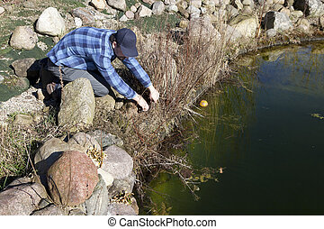 a man curtails plant between stones for the garden pond