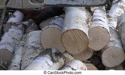 cutting birch firewood fuel