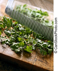 cutting coriander leaves