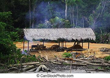 Cutting Down the Rain Forest