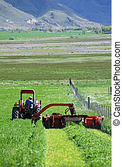 A tractor cutting hay.