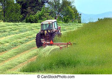 Cutting Hay in Tennessee - Farmer cuts hay in a field in...