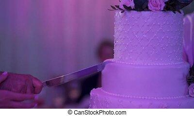 Cutting piece of wedding cake