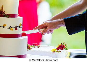 Cutting The Cake At Reception