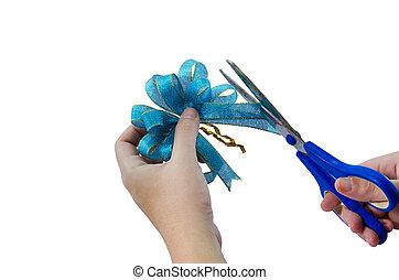 cutting the ribbin