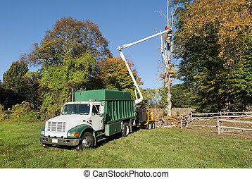 Worker in bucket truck cutting dead tree