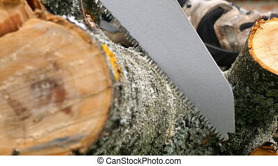 Cutting Wooden Log with Handsaw - Closeup shot of wooden log...
