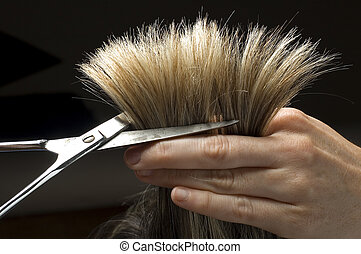 cutting hair close-up