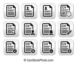 CV - Curriculum vitae, resume vecto