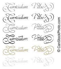 CV - Curriculum Vitae hand written. Different stylus size...