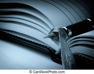 Closeup of fountain pen on a open diary book. Cyan toned image.