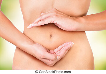 cycle inside the female body, circle of digestion, ...
