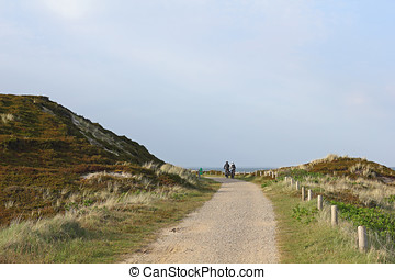 Cycle path on the island of Sylt