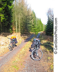 Cycle route in Saxony at Upper Lusatia in springtime