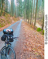 Cycle route in Saxony at Upper Lusatia in springtime. Saxon Switzerland, Saxony, Germany, Europe at winter or spring time