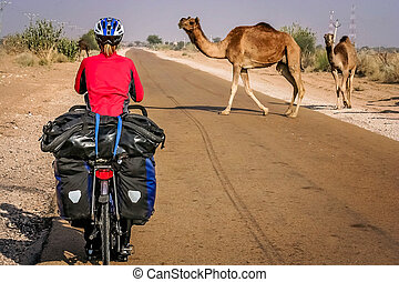 Cycling Through Desert - Cycling through remote desert road...