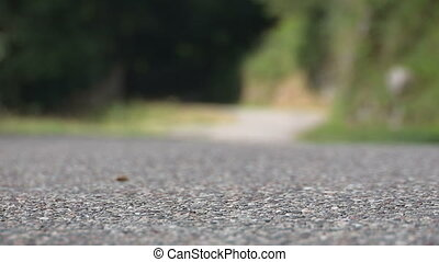 Cyclist going fast on small road