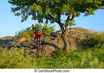 Cyclist in Red Jacket and Helmet Riding Mountain Bike Down Rocky Hill near Beautiful Green Tree. Adventure and Extreme Sport Concept.