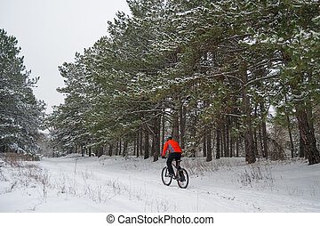 Cyclist in Red Riding Mountain Bike in Beautiful Winter Forest. Extreme Sport and Enduro Biking Concept.