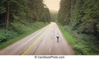 Cyclist On Forest Road At Sunset - Man on bicycle travels on...