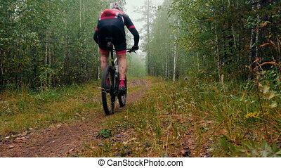 cyclist rides through forest during sports competitions in...