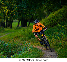 Cyclist Riding the Bike in the Beautiful Summer Forest -...