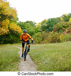 Cyclist Riding the Bike in the Beautiful Autumn Forest -...