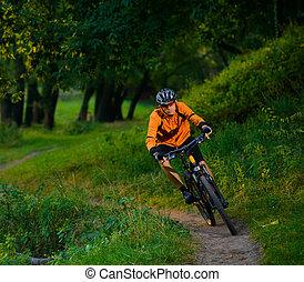 cycliste, équitation, les, vélo, dans, les, beau, été, forêt