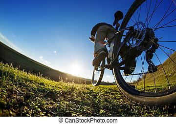 cycliste, beau, pré, ensoleillé, jeune, piste, équitation, jour
