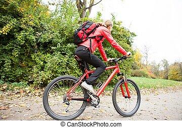 cycliste, femme, parc, automne, équitation vélo