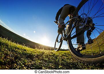 cycliste, montagne, extérieur, pré, ensoleillé, détail,...