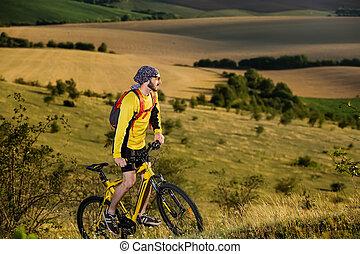 cycliste, pré, printemps, jeune, vert, rural, par, route