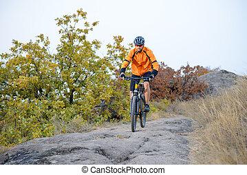cycliste, vélo voyageant, sur, les, beau, automne, montagne, piste