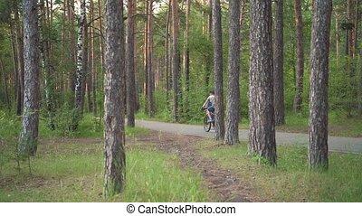 cyclists, поездка, байк, дорожка, в, , лес