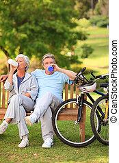 cyklar, par, deras, äldre