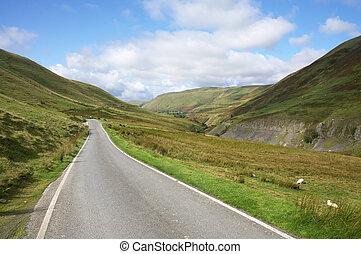 cymystwyth, dróżka, kraj, uk., jednorazowy, walia, ciasna droga