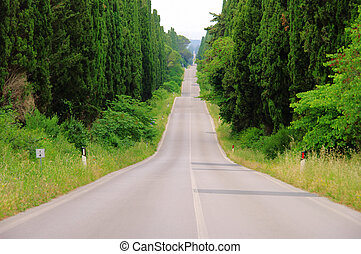 cypress avenue longest from Italy 01