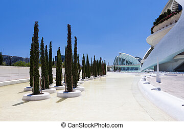 Cypress in Valencia Hemispheric - City of Arts and Science