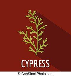 Cypress leaf icon, flat style - Cypress leaf icon. Flat ...