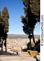 Cypress, Leonforte - Cypress near St. Croce church in ...