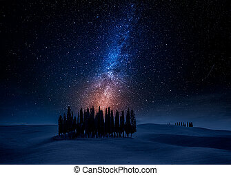 Cypress trees on field at night with stars, Tuscany, Italy