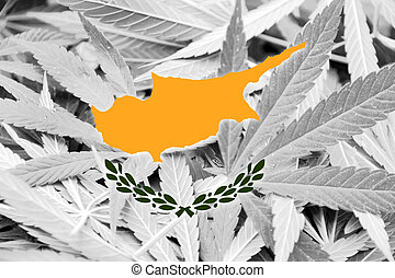 cyprus läßt, auf, cannabis, hintergrund., droge, policy., legalization, von, marihuana