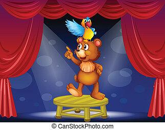 cyrk, niedźwiedź, papuga