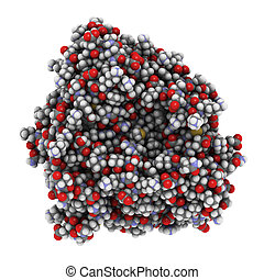 Cytochrome p450 protein, chemical structure. - Chemical...