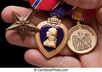 człowiek, dzierżawa, purpurowe serce, brąz, i, narodowe...