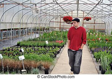 człowiek, przeglądnięcie, rośliny, wewnątrz w domu, szklarnia, pokój dziecinny