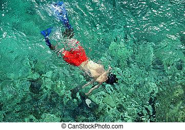 człowiek snorkeling, nad, prospekt morza